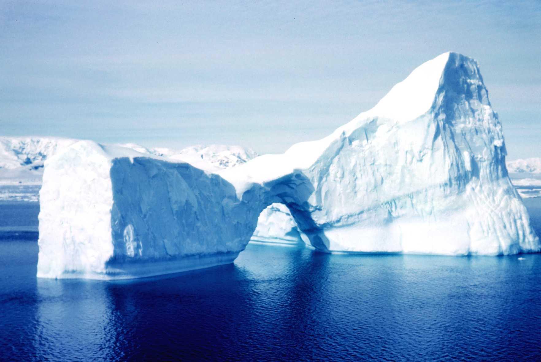 iceberg_reduit.jpg